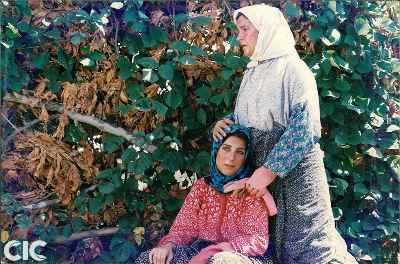 عکس فیلم روسری آبی