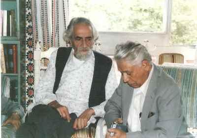 بزرگ علوی، انجوی شیرازی